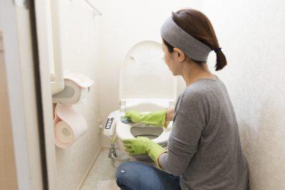 トイレの便器を掃除している主婦