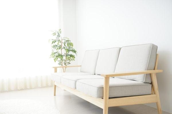 ソファーと観葉植物
