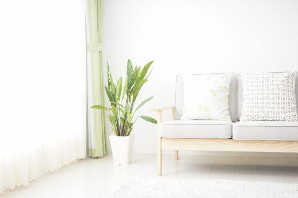白い部屋とソファー