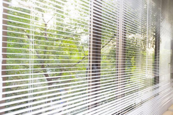 窓のブラインド