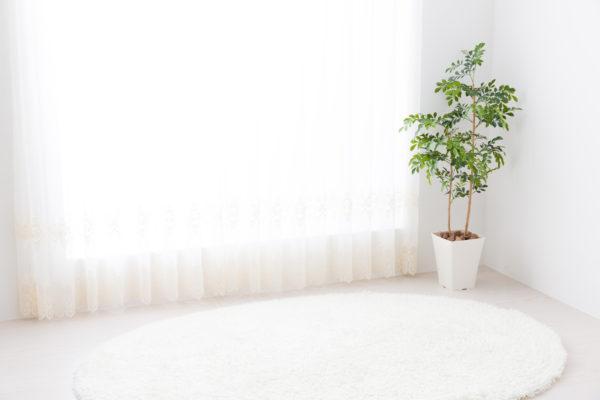 リビングルームの白いカーテン